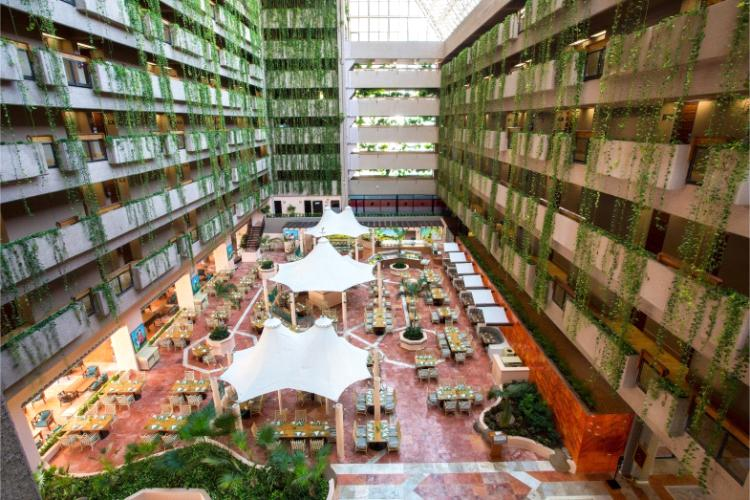El Restaurante Veranda es un restaurante tipo buffet especializado en gastronomía nacional e internacional, disfrútelo en su plan todo incluido en el Hotel Barceló Ixtapa
