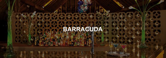 Hotel Sunscape Ixtapa Bar BARRACUDA, Adyacente al restaurante Bluewater Grill